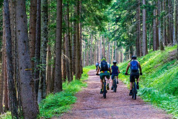 mountainbiken-fahrrad-steigerwald