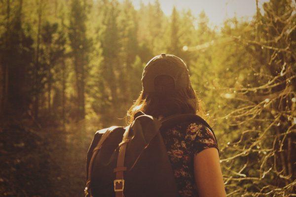 Wandern im Steigerwald